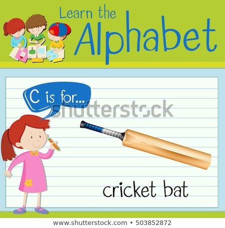 буква С крикет Bat иллюстрация дети ребенка Сток-фото © bluering