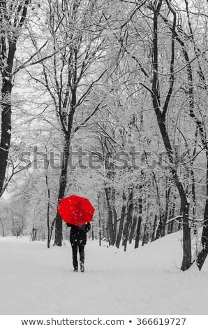 девушки красный зонтик ходьбе лес далеко Сток-фото © ankarb