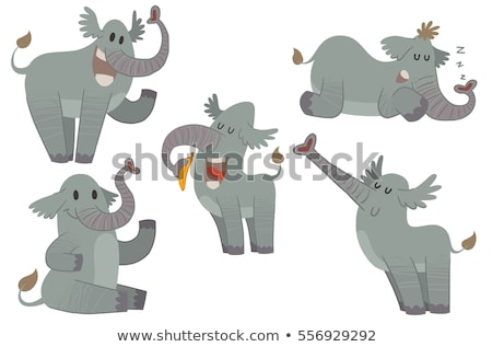 Gray elephants in different actions Stock photo © bluering