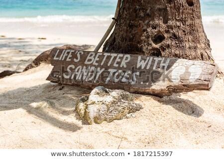 砂の つま先 ペア ぬれた フィート カバー ストックフォト © peterguess