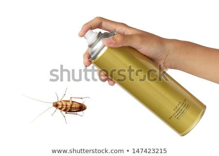 Cucaracha Cartoon dedo error aerosol matar Foto stock © carbouval