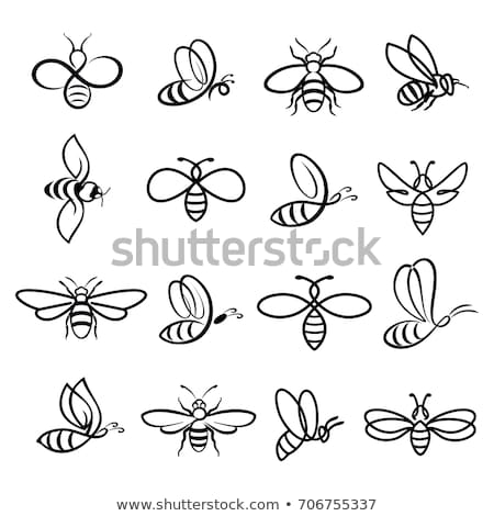 set of honey bee logo and labels for honey products stock photo © reftel