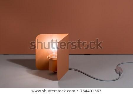 Luminous metal orange edison lamp Stock photo © bezikus