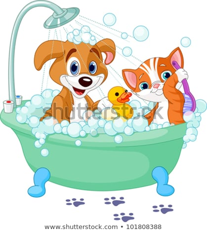 Cartoon chat chien bain lavage bulles Photo stock © Krisdog