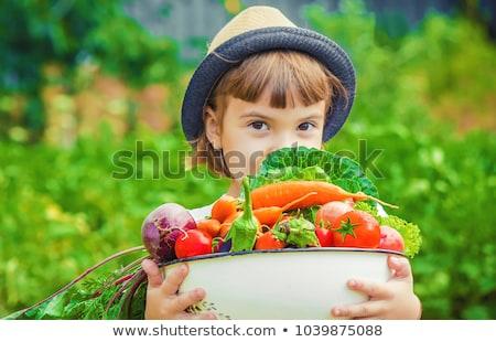 nina · invernadero · imagen · de · trabajo · jardín · verano - foto stock © is2