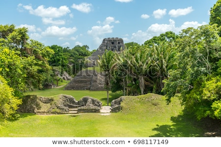 Ruines jungle Belize forêt construction Photo stock © wollertz