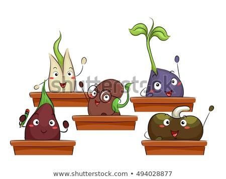 талисман саженцы сельского хозяйства класс красочный иллюстрация Сток-фото © lenm