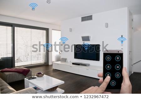 домой пультом тревогу иллюстрация ключевые электронных Сток-фото © adrenalina