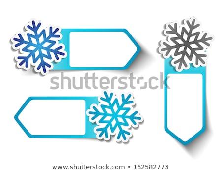 Winter Deal Vector Icon Button Design Stock photo © rizwanali3d