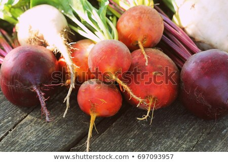 Fresh farm colorful beetroot on a wooden background. Detox and health. Selective focus. Red, golden, Stock photo © Virgin