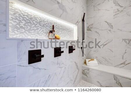 Mestre moderno banheiro interior luxo casa Foto stock © iriana88w