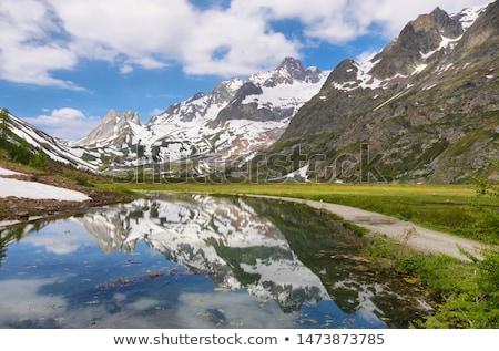 Aosta Valley from Mont Blanc Stock photo © Antonio-S