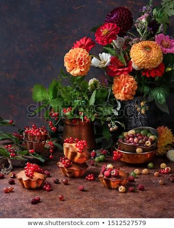 Bes toekomst voorjaar tuin Stockfoto © fanfo