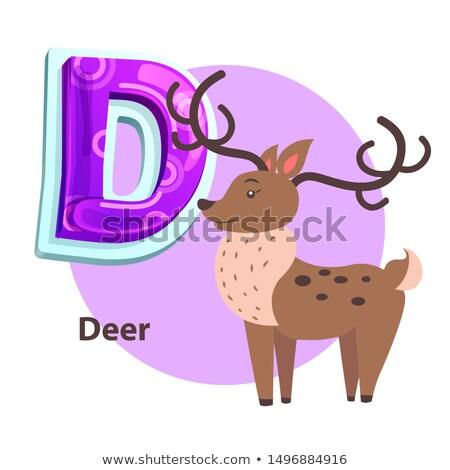 z · betű · állatkert · illusztráció · erdő · háttér · művészet - stock fotó © robuart