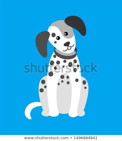 Dog Puppy with Spots Canine Wearing Collar on Neck Stock photo © robuart