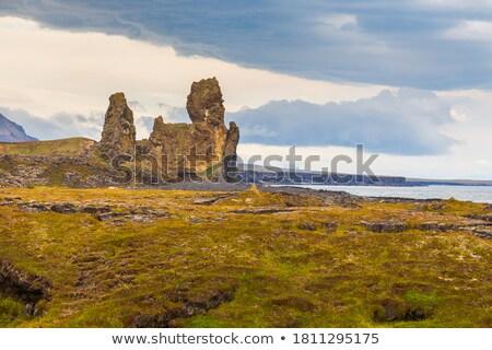 Toeristische attractie IJsland zee toeristische vent Stockfoto © Kotenko