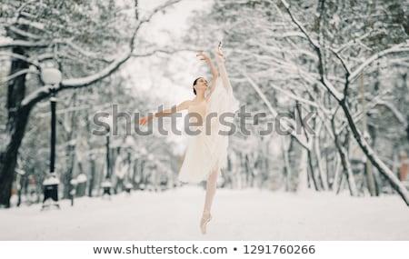красивой балерины танцы город прозрачный юбка Сток-фото © Stasia04