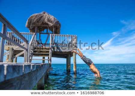 silhouette of a man throwing himself into the sea stock photo © nito