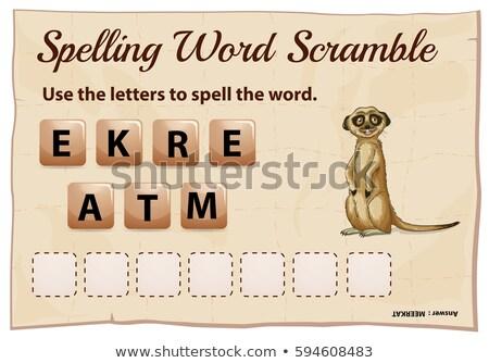Spelling word scramble game with word meerkat Stock photo © colematt