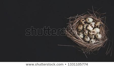 Metal basket with colourful Easter quail eggs Stock photo © Melnyk