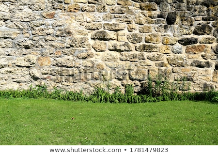 Eski tuğla ev çim gölet örnek Stok fotoğraf © colematt