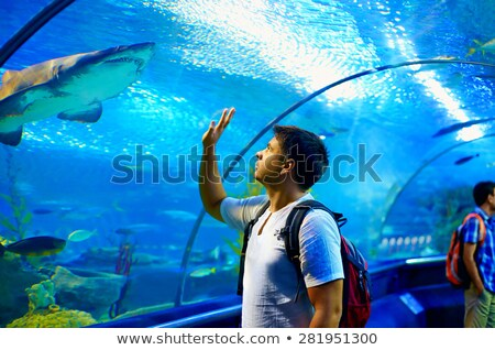 Familia feliz mirando peces túnel acuario mujer Foto stock © galitskaya