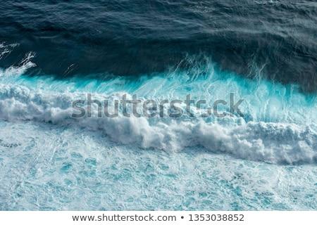 Ocean beach wave curling  onto the shore Stock photo © lovleah