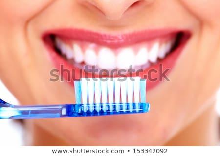 красивая женщина зубная щетка Сток-фото © serdechny