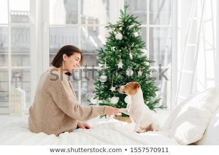 Cute funny dog poses with woman host on bed, gives paw, enjoy comfort and coziness, pose against dec Stock photo © vkstudio