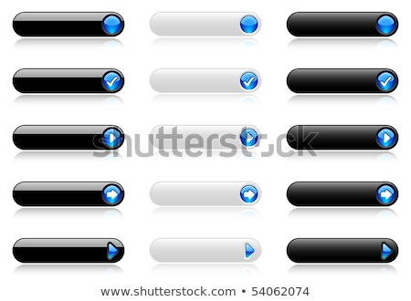 Blue Web Buttons with rollovers Stock photo © Balefire9