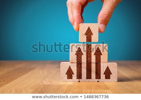 personal development in arrows Stock photo © marinini
