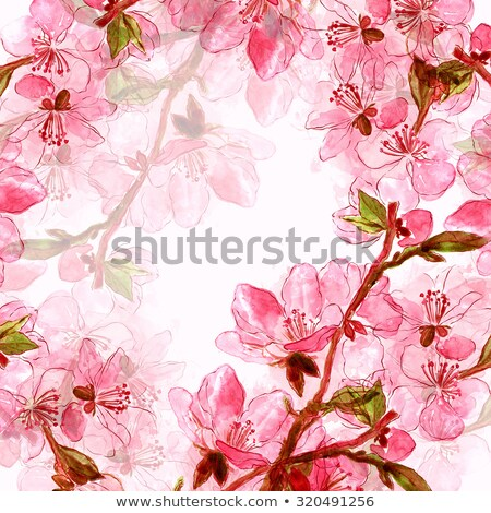 textured old paper background branch of a blossoming tree on garden stock photo © zhukow