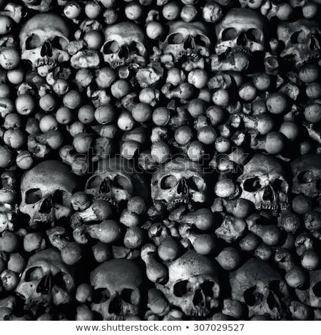 Massacre Of Skulls Stock photo © albund