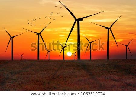 rüzgâr · kule · türbin · alan · mavi · gökyüzü · manzara - stok fotoğraf © creisinger