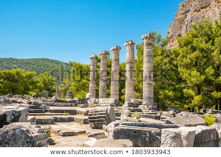 Stock photo: Columns of Priene