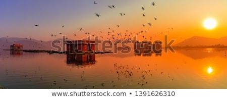 Palota víz India építkezés madarak tükröződés Stock fotó © Akhilesh