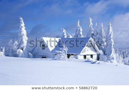 orlicke mountains in winter czech republic stock photo © phbcz