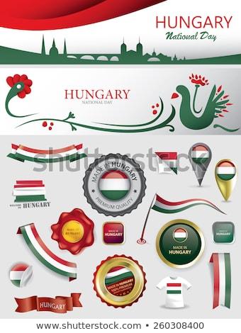 Hungary flag on shirt Stock photo © fuzzbones0