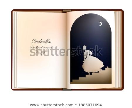 Cinderella on stairs Stock photo © nizhava1956