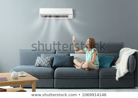 air conditioner  Stock photo © ozaiachin