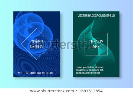 Abstract blu corporate ondulato brochure design Foto d'archivio © saicle
