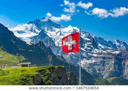 дома флаг Швейцария белый домах Сток-фото © MikhailMishchenko