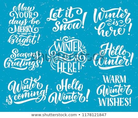 Sneeuw hallo winter kaarten vector Stockfoto © robuart