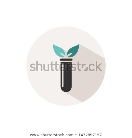 Laboratorium roślin kolor ikona cień beżowy Zdjęcia stock © Imaagio