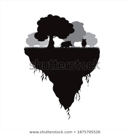 Manzara parça ağaçlar çim doğa Stok fotoğraf © robuart