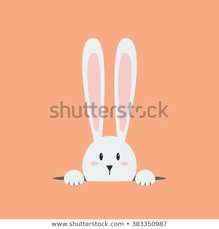 Easter Bunny in hole Isolated on White Background. Stock photo © ShustrikS