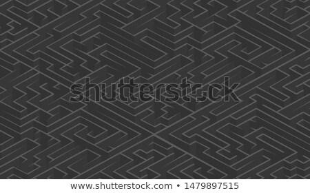 Izometrikus sötét szürke bonyolult labirintus kilátás Stock fotó © evgeny89