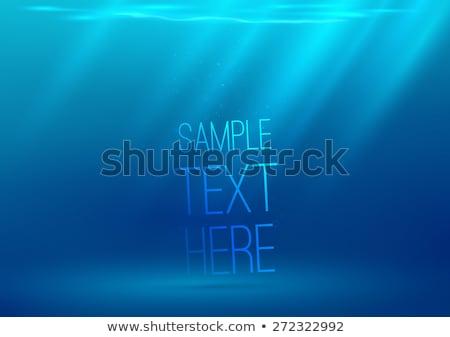Podwodne akwarium światło słoneczne pęcherzyki wektora rzeki Zdjęcia stock © pikepicture