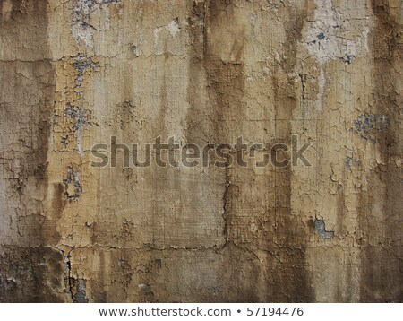 worn painted brown wall with paint blathering and leak drip      Stock photo © Melvin07