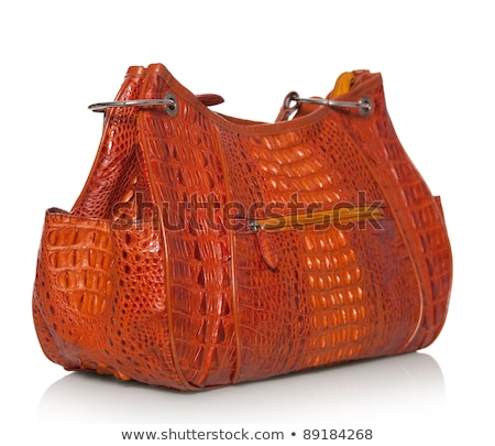 Crocodile leather handbag isolated Stock photo © Supertrooper